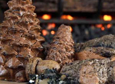 Must Have Accessories For Gas Logs